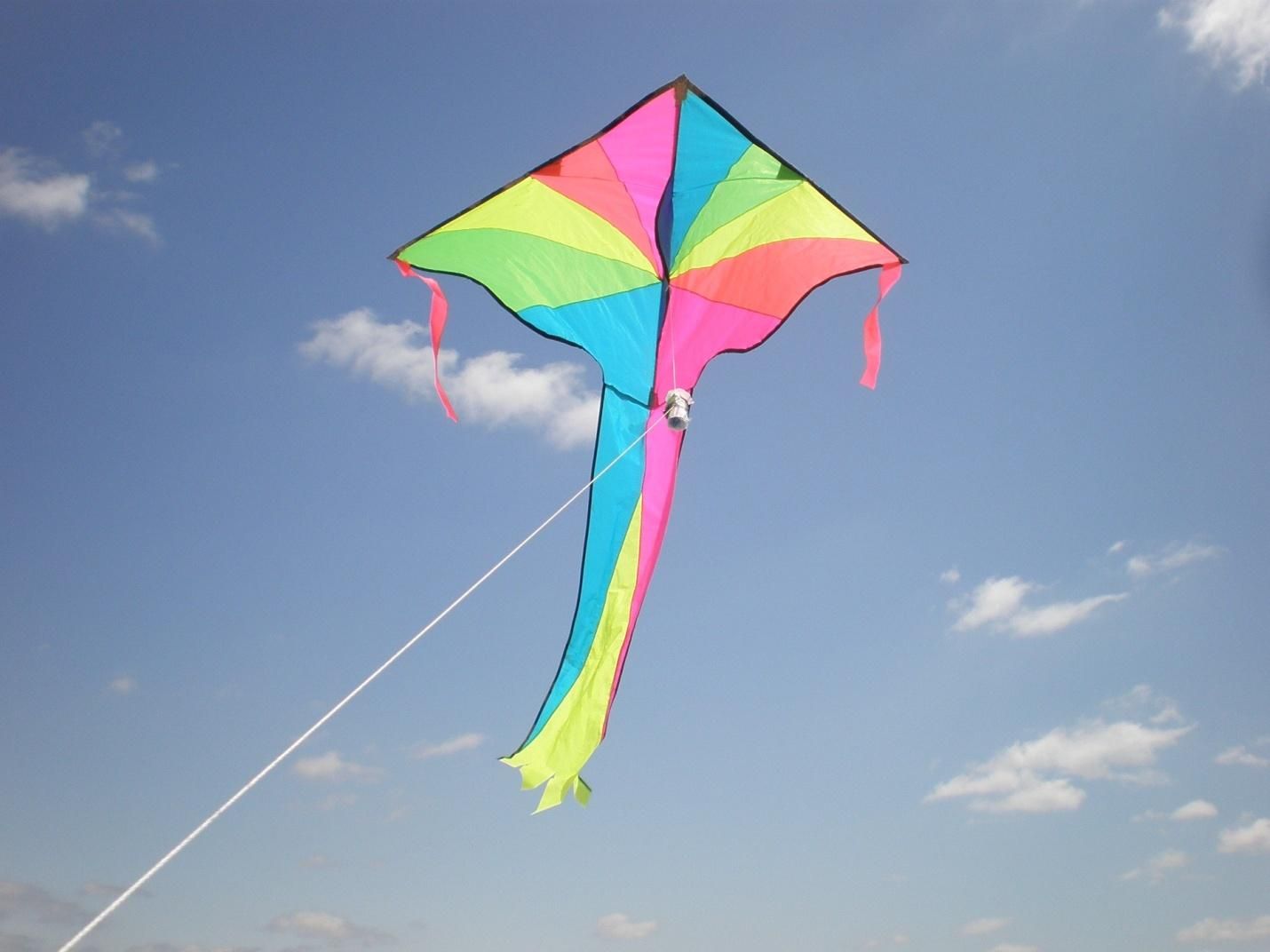 Kite Soaring in the Wind